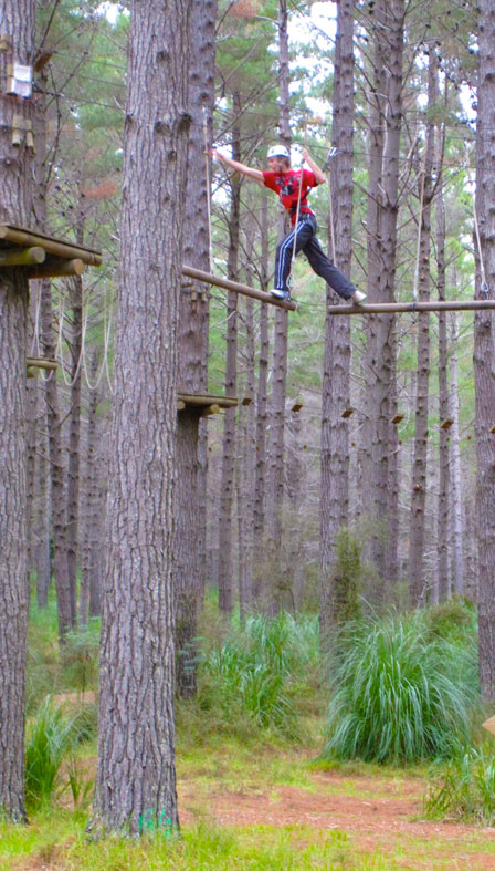 High walking at Woodhill Forest, north of Auckland.